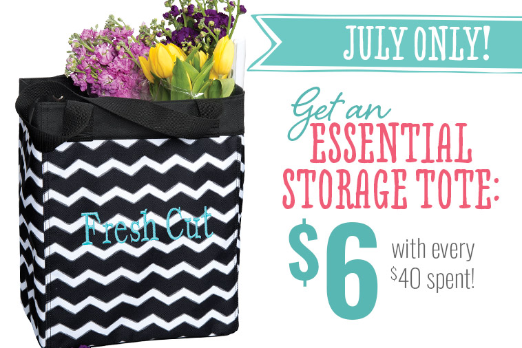 July Only! Get an Essential Storage Tote: $6 with every $40 spent!